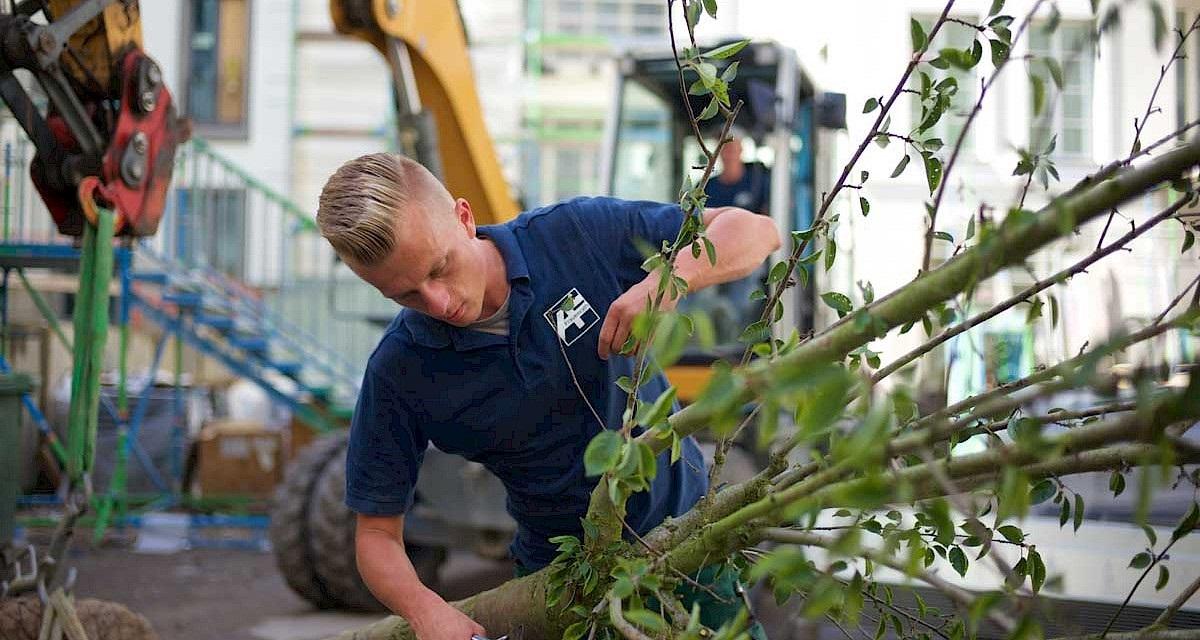 Ausbildung Gartner M W D Fachrichtung Garten Und Landschaftsbau